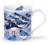 Bute Seabirds Oystercatcher